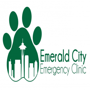 emerald-city-emergency-clinic-inc-ps