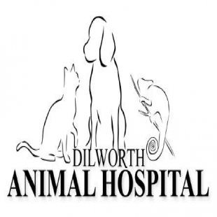 dilworth-animal-hospital