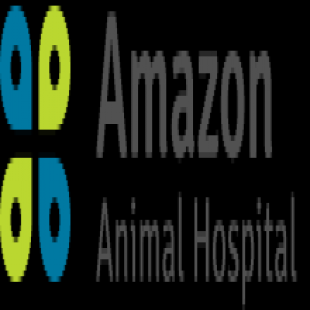 amazon-animal-hospital