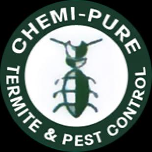chemi-pure-termite-pest-control