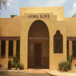 st-marys-animal-clinic