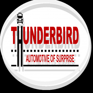 thunderbird-automotive-of-surprise