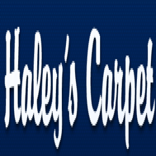 haleys-carpet