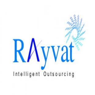rayvat-accounting
