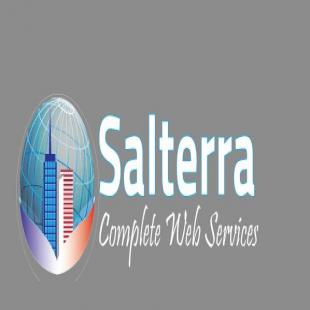 salterra-seo-services