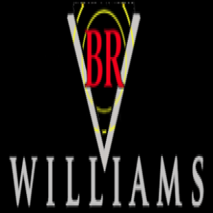 br-williams-trucking-inc