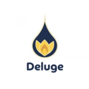 deluge-digital-marketing