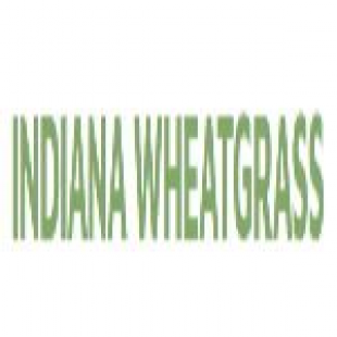 indiana-wheatgrass