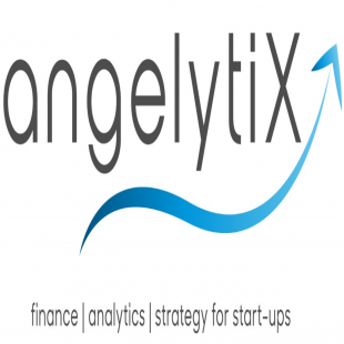 angelytix-consulting