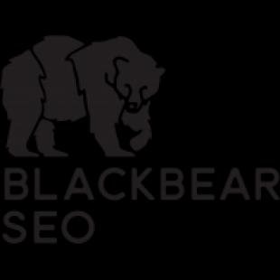 black-bear-seo-honolulu-IjE