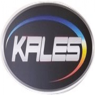 kales-collision-center