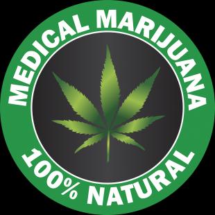 tampa-marijuana-doctors