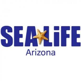 sea-life-arizona