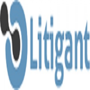 litigant