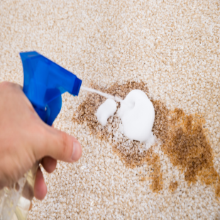 dramatik-carpet-cleaning