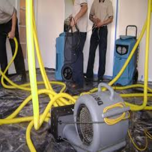 phoenix-water-damage-experts