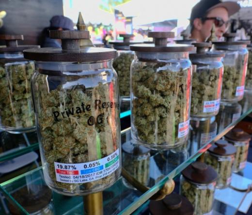 humboldtmarijuanashopcom