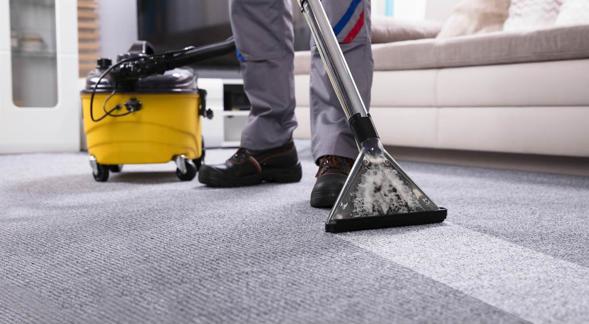 blue-elm-carpet-cleaning-services