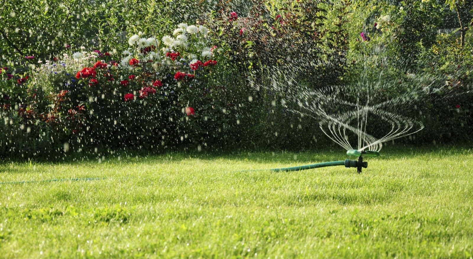 matts-lawn-service