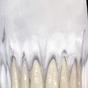 best-dentist-orthodontist-cedar-rapids-ia-usa