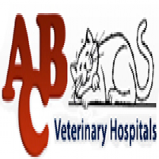 best-animal-hospitals-san-diego-ca-usa