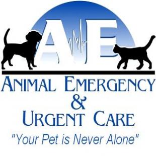 best-veterinarians-bakersfield-ca-usa