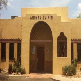 best-animal-hospitals-tucson-az-usa