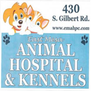 best-veterinarians-mesa-az-usa