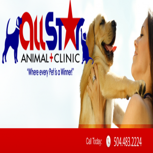 best-veterinarians-new-orleans-la-usa