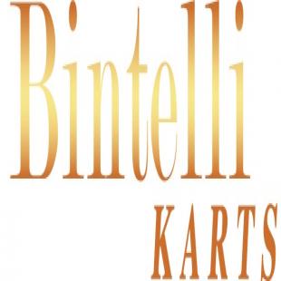 bintelli-karts