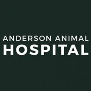 anderson-animal-hospital