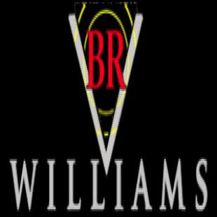 br-williams-trucking-inc