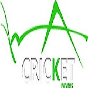 cricket-pavers-of-fort-la