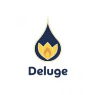 deluge-digital-marketing