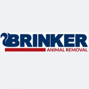 brinker-animal-removal-cRm