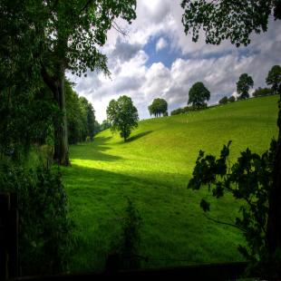 siteone-landscape-supply