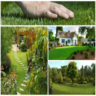 jr-lawn-and-landscape