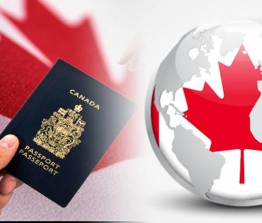 immigrationnationprofessionalimmigrationconsultants