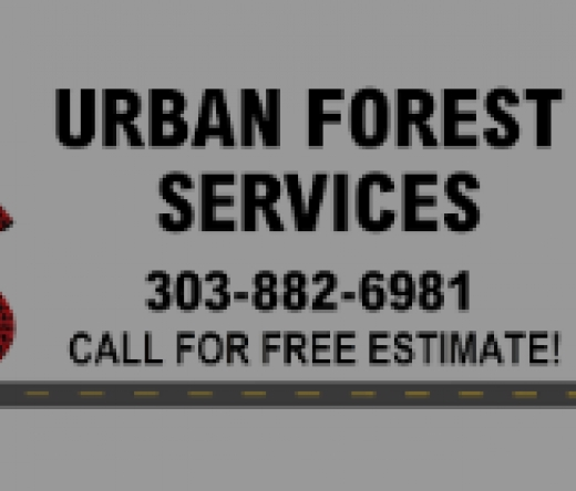 urban-forestry-tree-service