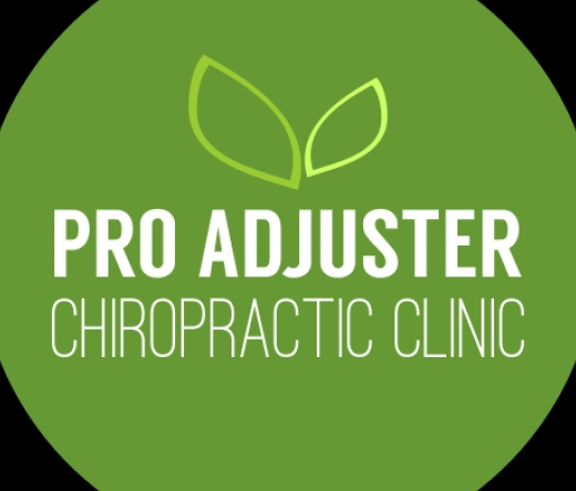 pro-adjuster-chiropractic-clinic