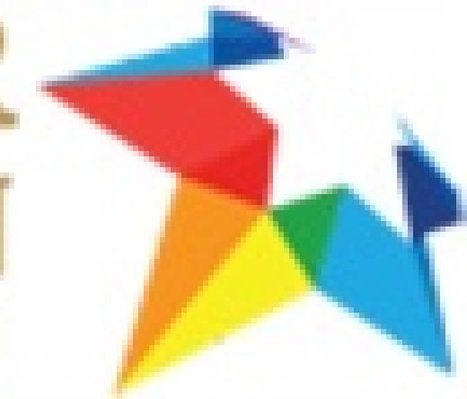 echo-star-immigration-services-llc