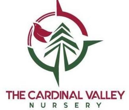 thecardinalvalley